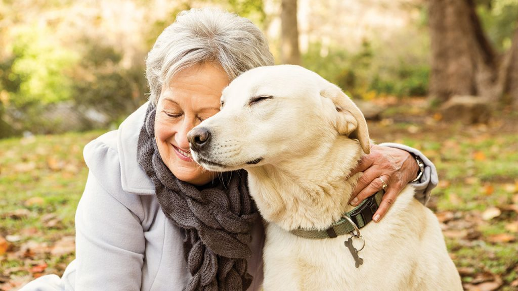 How Pets Can Help The Mental Health of Elders